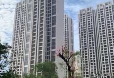 东汇名雅城  大5房 仅售239.8万