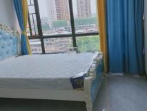 东汇城 2室1厅 7/32F 80平方 3500元/月